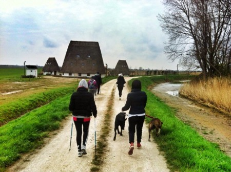 Nordic Walking Padova in Valle Millecampi