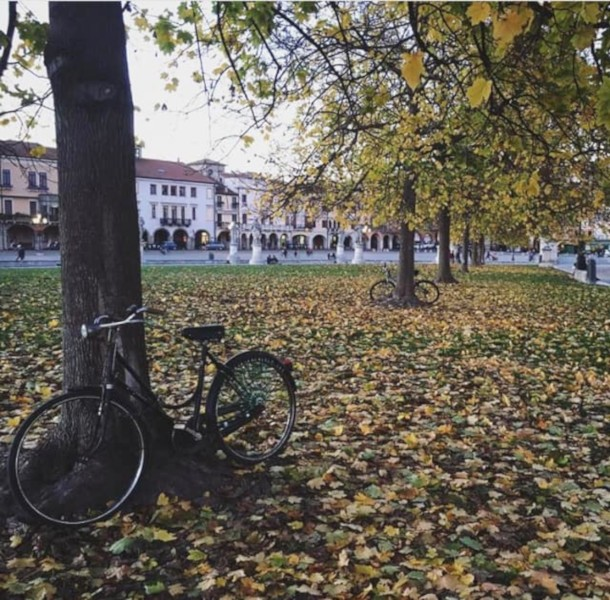 weekend autunnale a Padova
